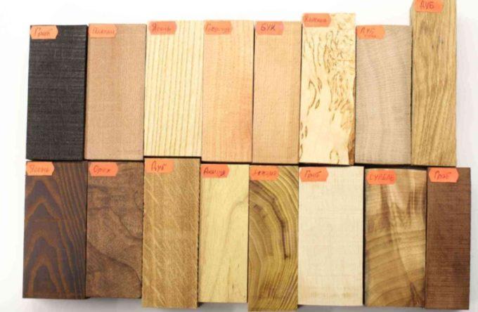 Ценные породы древесины России