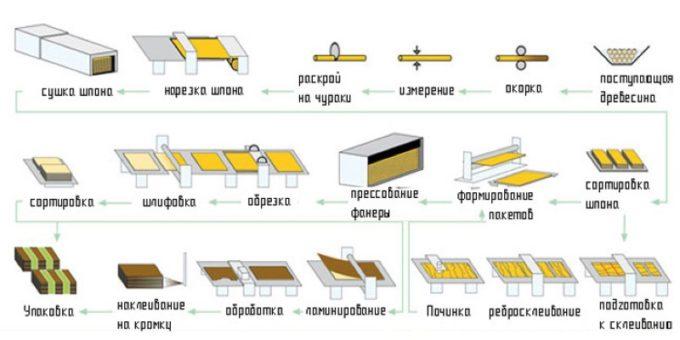Схема производства фанеры
