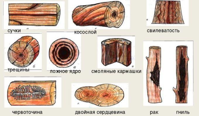 Типы дефектов древесины