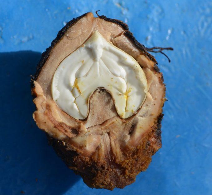 Плод черного ореха в разрезе